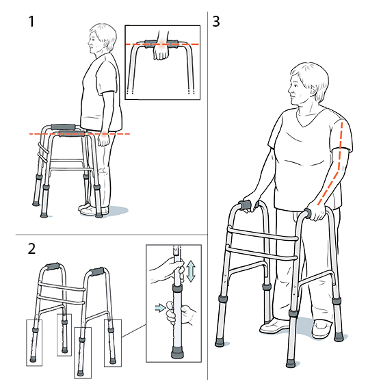 3 steps in fitting a walker.