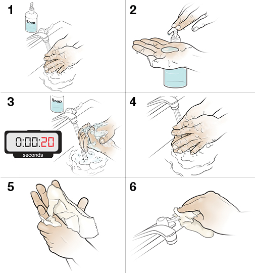 6 steps in proper handwashing