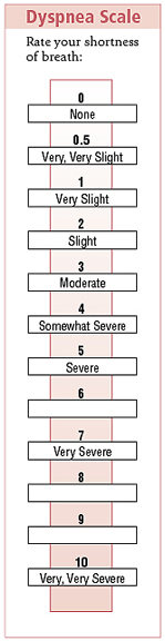 Dyspnea scale to rate shortness of breath from 0 None, to 10 Very, very severe.
