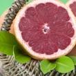 ../../images/ss_grapefruit.jpg