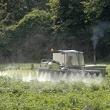 ../../images/ss_pesticides.jpg
