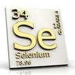 ../../images/ss_selenium.jpg