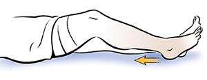 Leg from knee down showing heel slides.