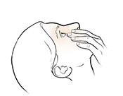 Woman leaning head back and pulling gently down on lower eyelid.