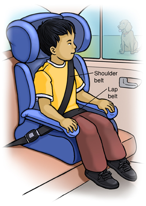 Booster Seats And Seat Belt Safety