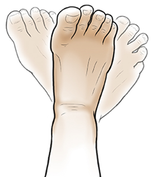 Foot doing rotation exercise.