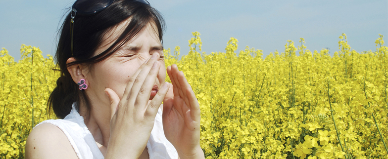 Image of woman in a field of yellow fluffy flowers sneezing.